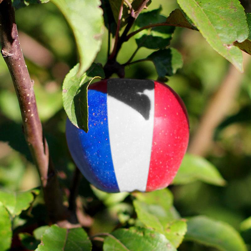 Gargouil : fabrication française