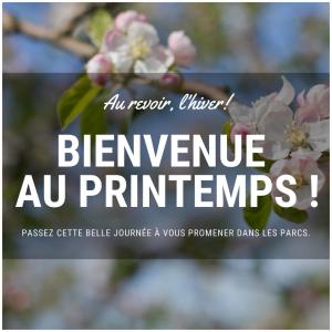 Le printemps est là ! 🍃  #spring#printemps2021#printemps#fleuraison#beautemps#goodtimes