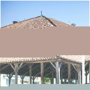 Cette construction historique du 16 siècle connue sous le nom «place des halles» prône toujours dans le village de Charroux.   En effet pour les plus curieux cette Halle dispose de trois nefs sur onze travées, constituée d'une couverture en tuiles courbes le tout posé sur charpentes en bois supportées par des poteaux également en bois posés sur des poteaux en pierre.  Impressionnant non ? 🤩  @sebastienlaval📸 #charroux#monument#sudvienne#poitoucharentes#charrouxvienne#nouvelleaquitaine#poitou