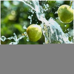 Pas trop chaud ☀️?  ~ Une envie de jus de fruits pour accompagner vos moments de détente ?  ~ Rendez-vous sur notre site internet et découvrez toute notre gamme de jus de fruits 🍎   @studio_onze_production #fresh#summer#summervibes#pommes#applejuice#soft#drinks#letsdrink#detente😎#petitplaisir#momentdebonheur#jusdefruits