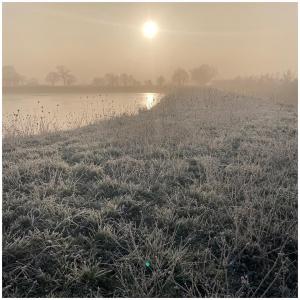 Sunrise view ☀️ 🌅  #sunrise#sunrisephotography#vergersecoresponsables#gelée#geleematinale#intapic#viewpoint#happymoments