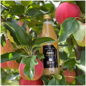 Encore un peu de patience avant de débuter la cueillette de nos pommes dans nos vergers écoresponsables 🍎🤩  #vergers#cueillette#pommes#fruits#jusdepommes#arboriculture#producteur#golden#applejuice#ecoresponsable#producteurlocal