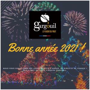 Toute l'équipe Gargouil vous souhaite une excellente année 2021 remplie de bonheur et de réussite 🎊🤩 #newyear#happynewyear#2021 #bye2020#reussite#life